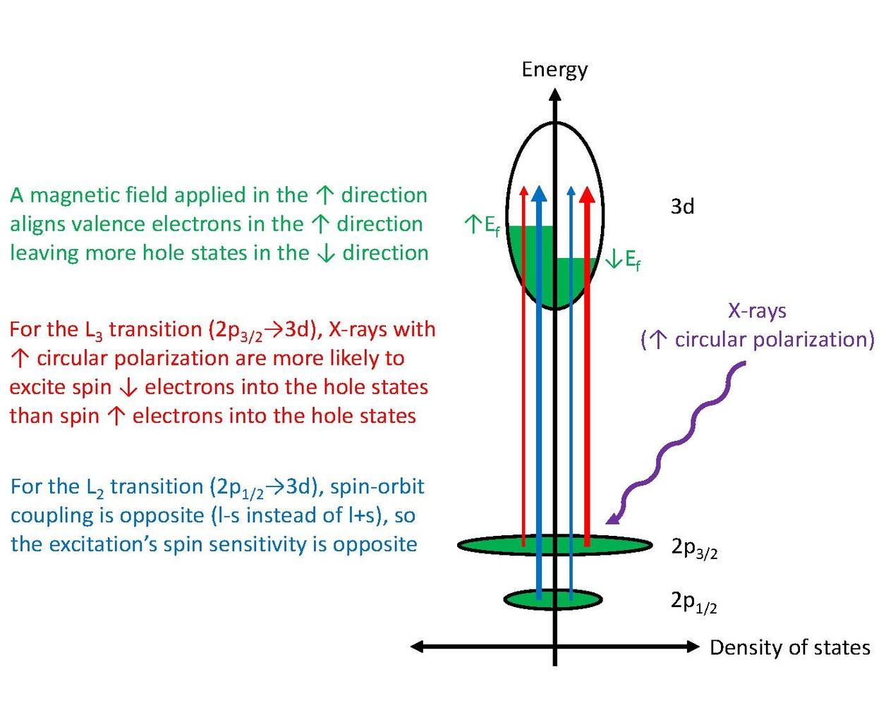 File Diagram Of X Ray Magnetic Circular Dichroism