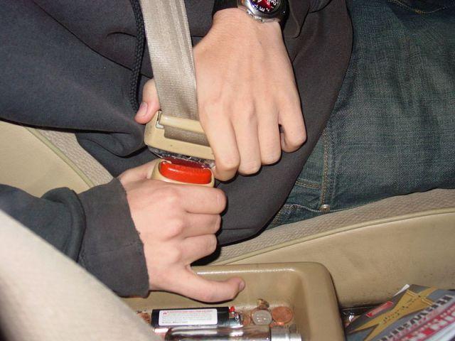 File:Seatbelt CU.JPG