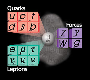 Standard Model From Fermi Lab