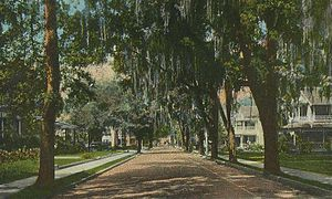 Fort King Street, Looking West, Ocala, FL; fro...