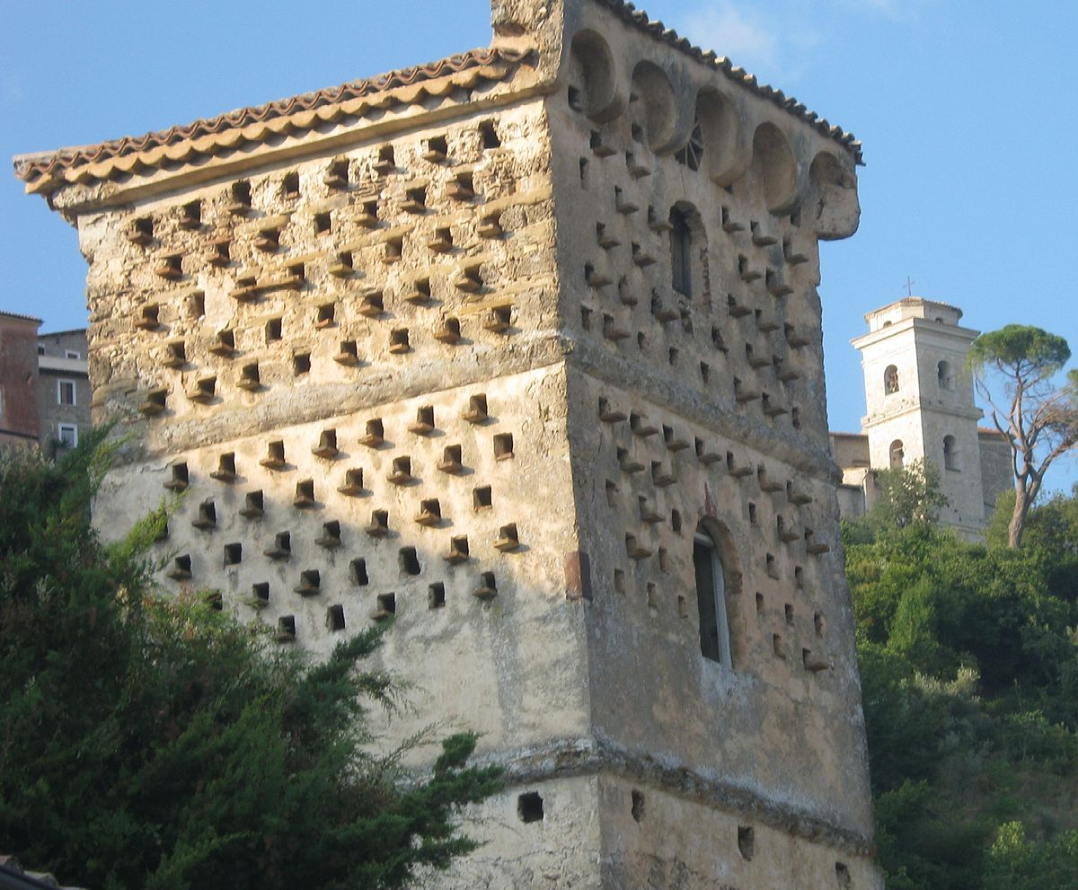 Torre colombaia  Wikipedia