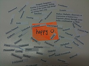 Emotions associated with happiness
