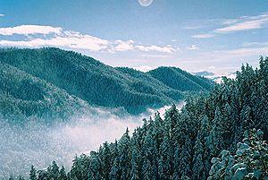 Resultado de imagen para la aparicion de las montañas