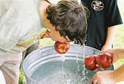 apple bobbing