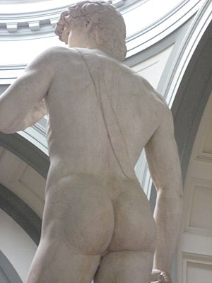 English: David by Michelangelo(back side)