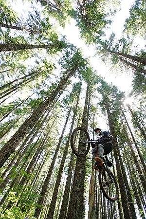 Mountain biker gets air in Mount Hood National...