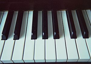 The modern keyboard is based on the intervalli...