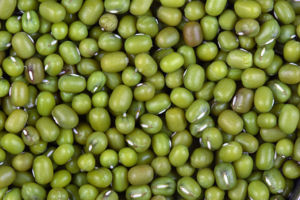 A close up picture of green gram, (mung bean, ...