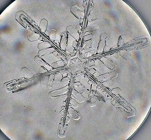 Snowflake. Small microscope kept outdoors. Sna...