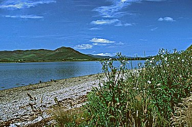 Dornoch Firth - geograph.org.uk - 52109.jpg