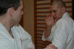 Martial arts training session