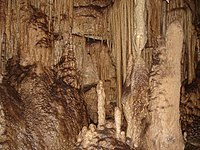 Parc national de Mammoth Cave 007.jpg