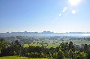 English: Ribnica field, Slovenia