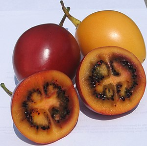 Red and yellow tamarillos (tree tomatos). Pict...