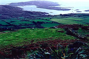 English: Ring of Kerry - Derrynane Bay