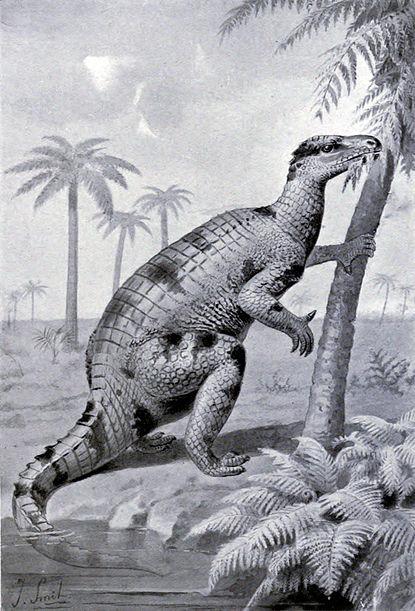 File:Iguanodon feeding.jpg