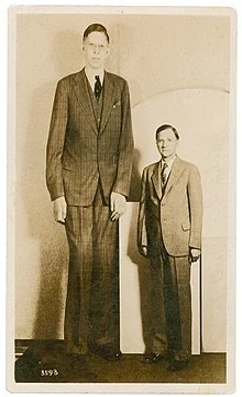 L Homme Le Plus Grand De L Histoire : homme, grand, histoire, Robert, Wadlow, Wikipédia