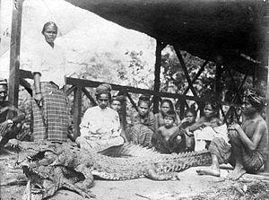 Nederlands: Repronegatief. Krokodillen op Raha...
