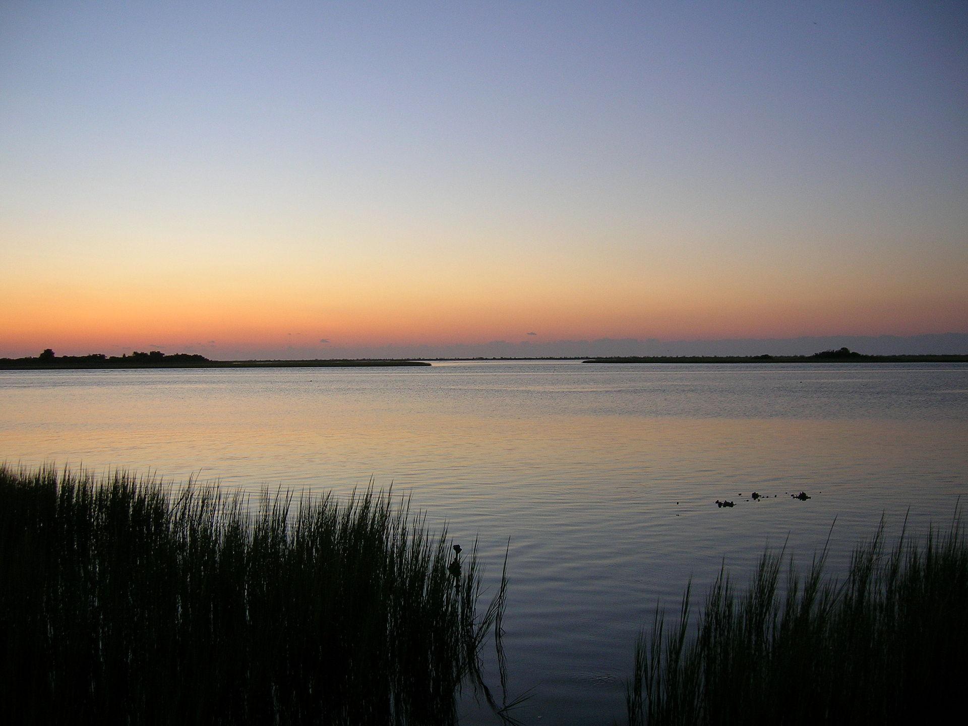 Masonboro Island  Wikipedia