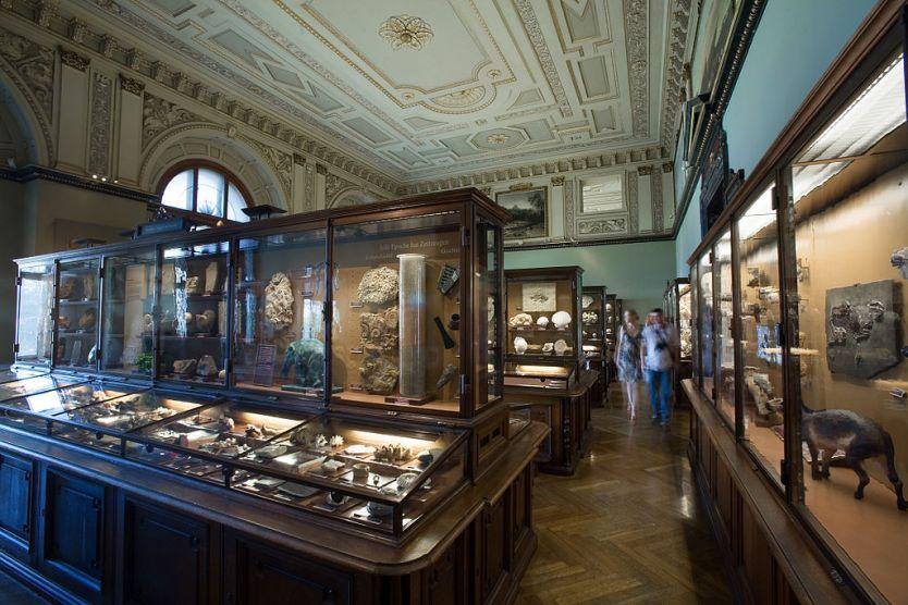 Vienna - Natural History Museum - 6150