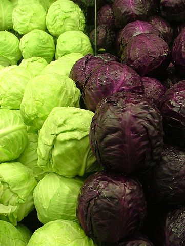 https://i0.wp.com/upload.wikimedia.org/wikipedia/commons/thumb/f/fa/Cabbages_Green_and_Purple_2120px.jpg/361px-Cabbages_Green_and_Purple_2120px.jpg