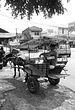 English: Delman adalah kendaraan transportasi ...