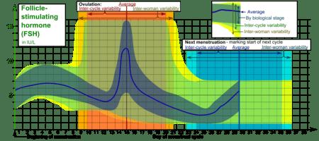 450px Follicle stimulating hormone %28FSH%29 during menstrual cycle - Hormona Folículo Estimulante