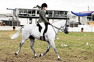 A young rider at a horse show in Australia
