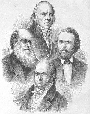 4 evolutionists (1873)