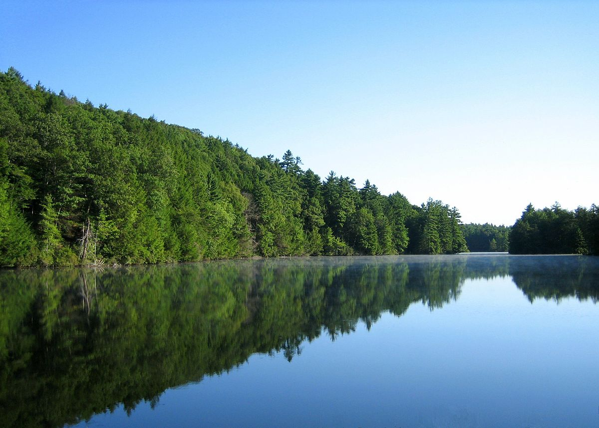 Bigelow Hollow State Park  Wikipedia