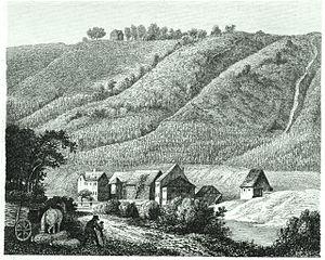 Français : Vignoble allemand en 1859
