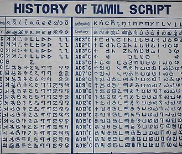 Historical Evolution Of Tamil Writing From The Earlier Tamil Brahmi Near The Top To The Current Tamil Script At Bottom