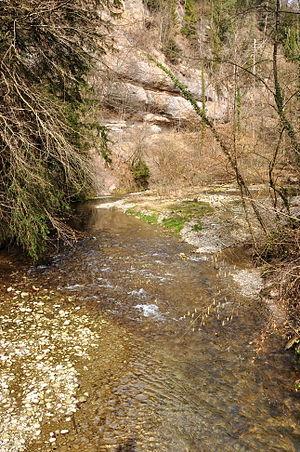 Jona river respectively Tannertobel between Ta...