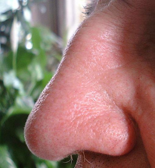un nez...