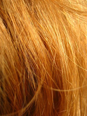 Red hair in close-up