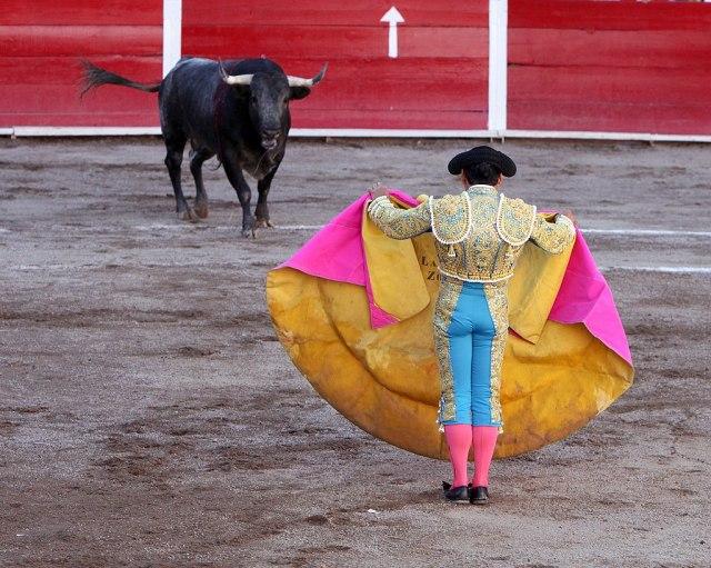 1024px San marcos bullfight 01 Нелевићу, не оставља се мајка кад је распета и нападнута од свих (ВИДЕО)