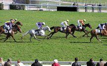Horse-race at Auteuil hippodrome Français : Co...