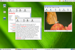 Desktop Gnome 2.20