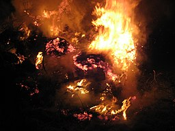 https://i0.wp.com/upload.wikimedia.org/wikipedia/commons/thumb/f/fe/Bonfire_inferno.jpg/256px-Bonfire_inferno.jpg