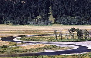 English: Lamar River, Yellowstone National Par...