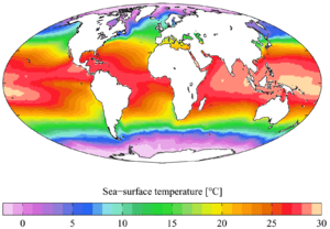 Annual mean sea surface temperature from the W...