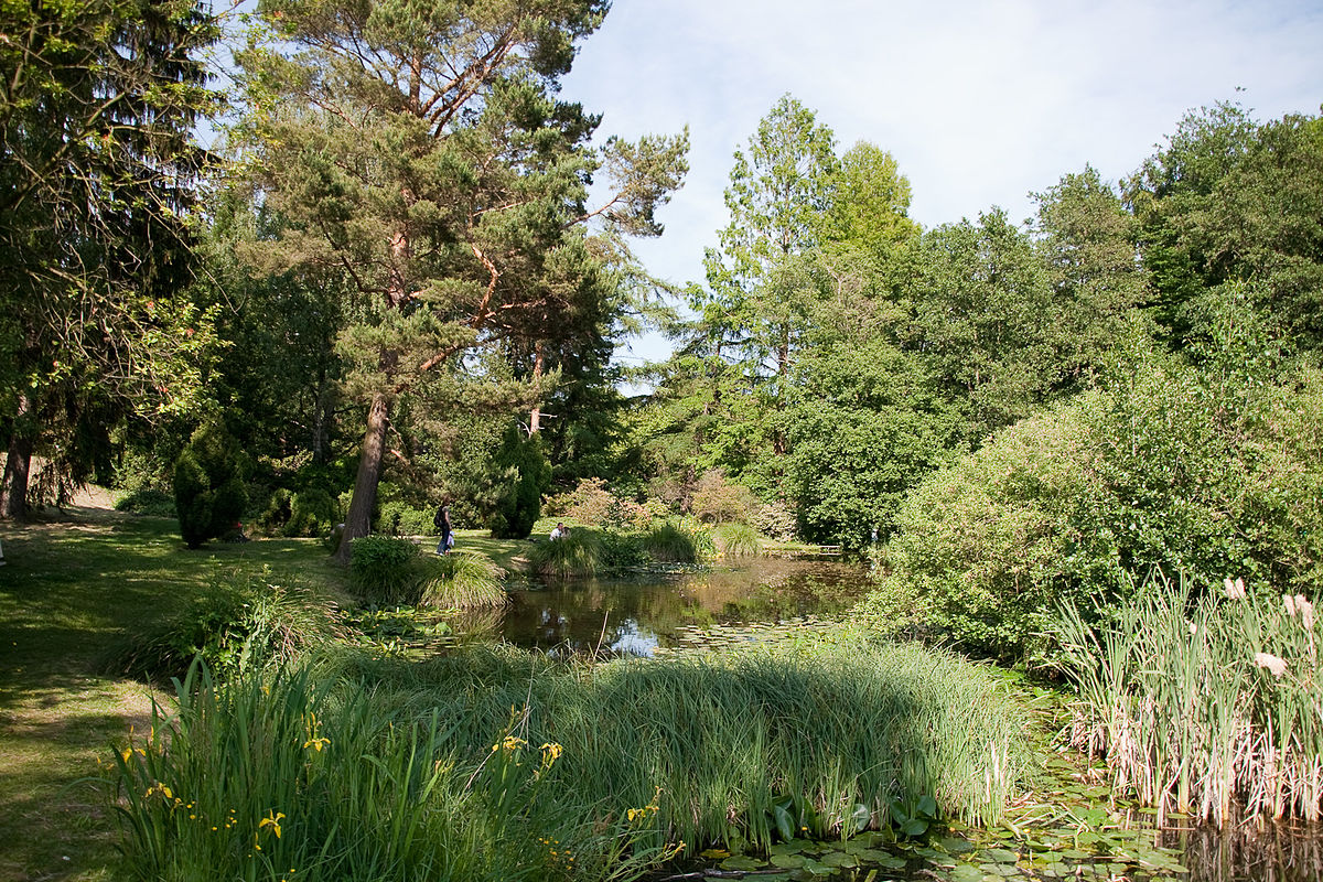 Botanischer Garten Universität Rostock  Wikipedia