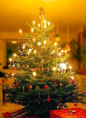 A Danish Christmas tree illuminated with burni...