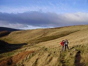 English: Navigating on Wild moor. This path cr...