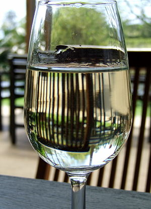 Typical shape and design of a white wine tasti...