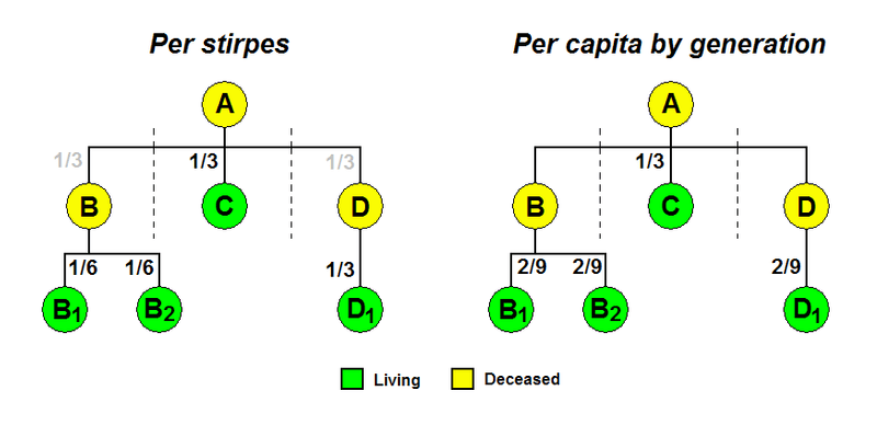Per stirpes vs Per capital by generation