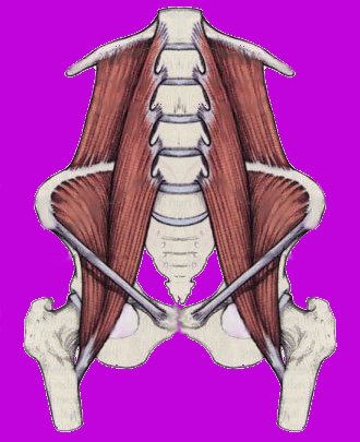 Psoas, label