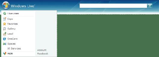 The Windows Live Flair header
