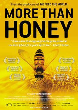 More than Honey.jpg