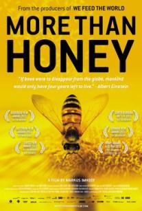 More than Honey.jpg